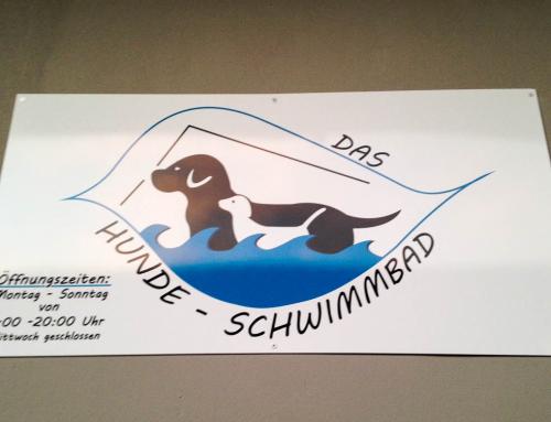 Das Hunde-Schwimmbad