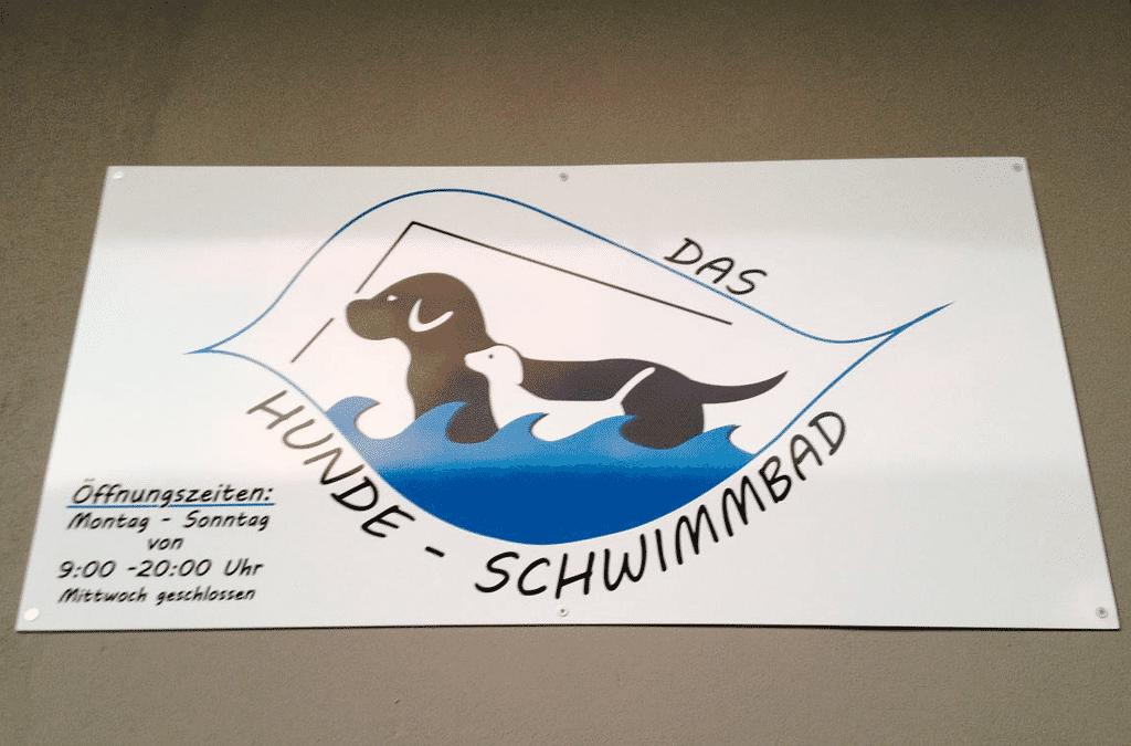 Das Hunde Schwimmbad