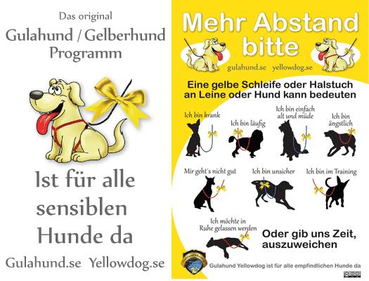 gelberhund yellowdog