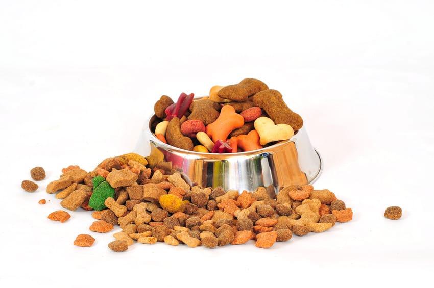 Hundefutter Trockenfutter Mahlzeit